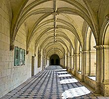 Fontevraud Abbey Colonnade by RebeccaWeston