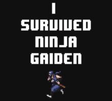 I Survived Ninja Gaiden by TaneNikora