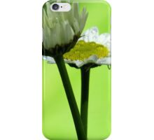 Rainy Daisy iPhone Case/Skin