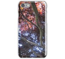 The Sky Through Cracks in Autumn Leaves iPhone Case/Skin