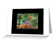 Red-Eyed Tree Frog #5 Greeting Card