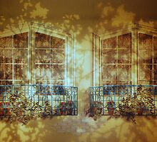 Twin Shaded Windows by saseoche