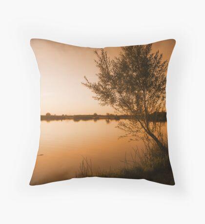 Random Thoughts of Granduer Throw Pillow