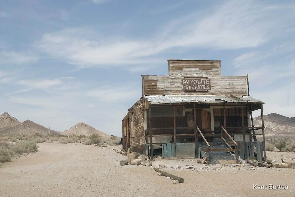 In Rhyolite, Nevada - a Ghost Town by Kent Burton