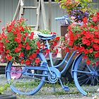 Bike and Flowers by Jellybean720
