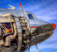 Under the Skin -- Vintage DC-3 by Bill Wetmore