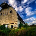 Abandoned Barn by Tim Poitevin