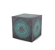 3d model of pandorica Photographic Print