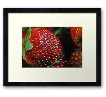 Red Ripe Strawberry Framed Print