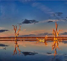 Pelican Point Lake Bonney by Bill Atherton