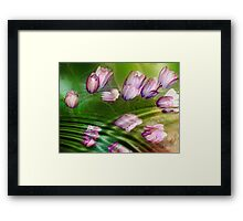 Remember the Spring Framed Print