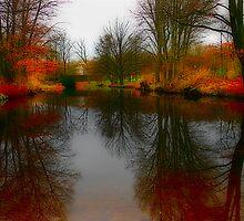 Tiergarten Pond by Jason Bran-Cinaed