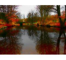 Tiergarten Pond Photographic Print