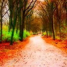 Tiergarten Path by Jason Bran-Cinaed