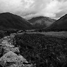 Wall in Wasdale by Carl Greenwood