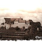 Greetings from Bad Münster am Stein/Ebernburg by TriciaDanby