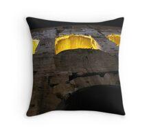 Colosseum Up Close Throw Pillow