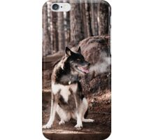 Frosty Morning Walk iPhone Case/Skin