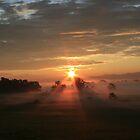 Argyle Sunrise by Deborah Austin
