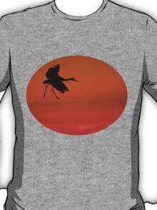 Walking on Air T-Shirt