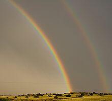 New Mexico Rainbow by BarneyB