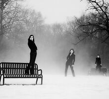 Three in snow and fog by Mike  Wood