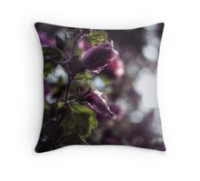 Backlit (Rose of Sharon) Throw Pillow