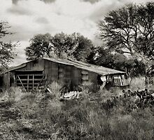 On The Farm  2     ( BoneYard Series ) by Carla Jensen