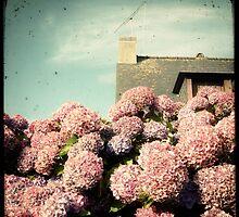 La Maison aux Hortensias by Marc Loret
