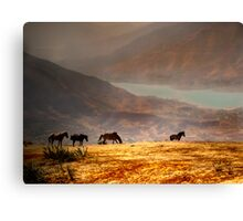 Country Side Canvas Print