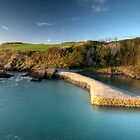 Stackpole Quay by Mark Robson