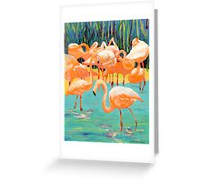 Flamingo's Greeting Card