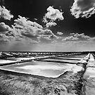 Pinch of salt by Vikram Franklin