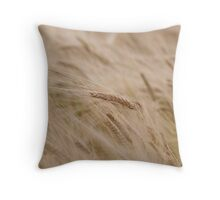 Barley Throw Pillow