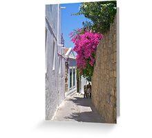 Fuscia flowers in Rhodes Greeting Card