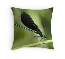 080209-2    JOE COOL Throw Pillow