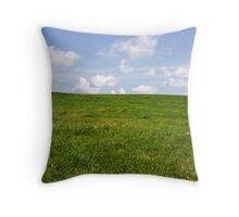 Green Grass & Blue Sky Throw Pillow