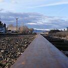 Life On A Rail by NancyC