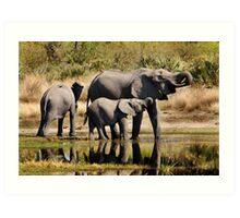 Like mother like daughter - Okavango Delta Art Print