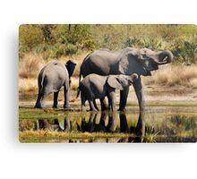 Like mother like daughter - Okavango Delta Metal Print