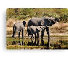 Like mother like daughter - Okavango Delta Canvas Print