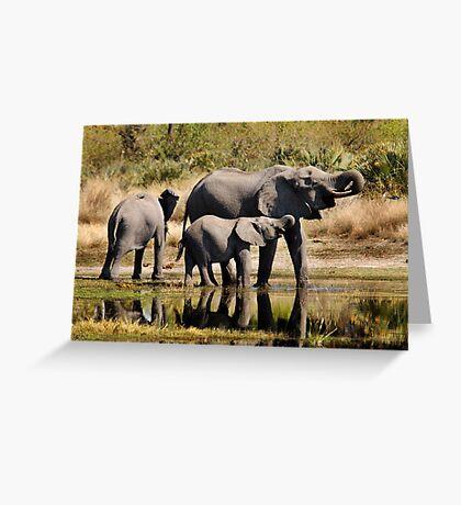 Like mother like daughter - Okavango Delta Greeting Card
