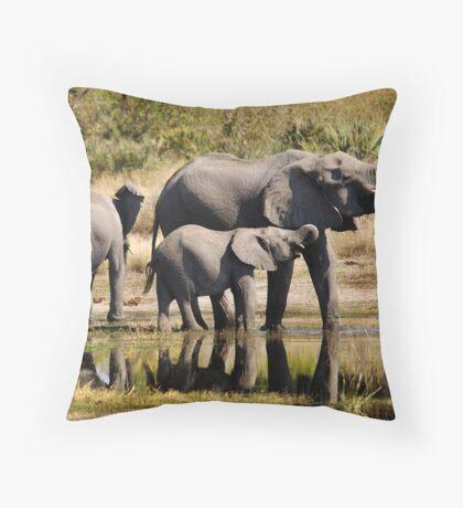 Like mother like daughter - Okavango Delta Throw Pillow