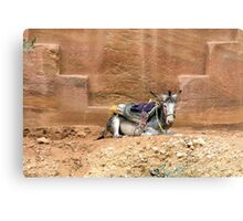 The Aesthete, Petra, Jordan Canvas Print