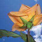 Back side of a Peach Rose by Diane Trummer Sullivan