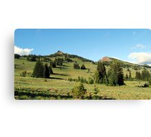 Pristene Alpine Meadow Canvas Print