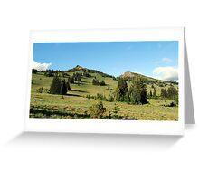 Pristene Alpine Meadow Greeting Card