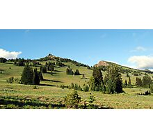 Pristene Alpine Meadow Photographic Print