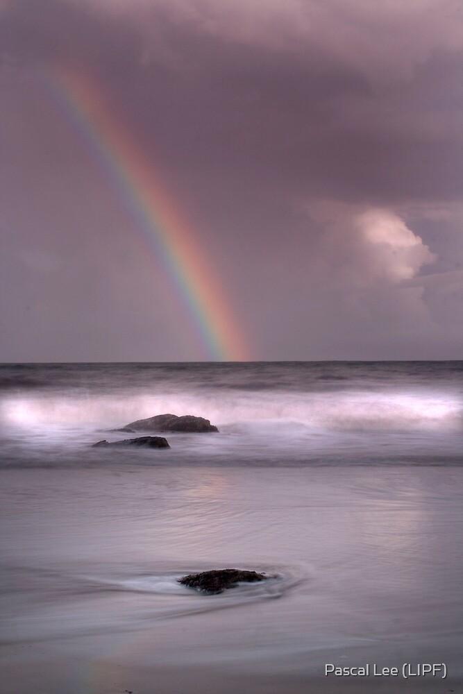 Rainbow by Pascal Lee (LIPF)