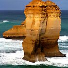Southern Ocean Beauty by Paige